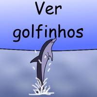 Ver golfinhos