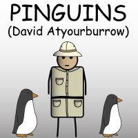 Pinguins